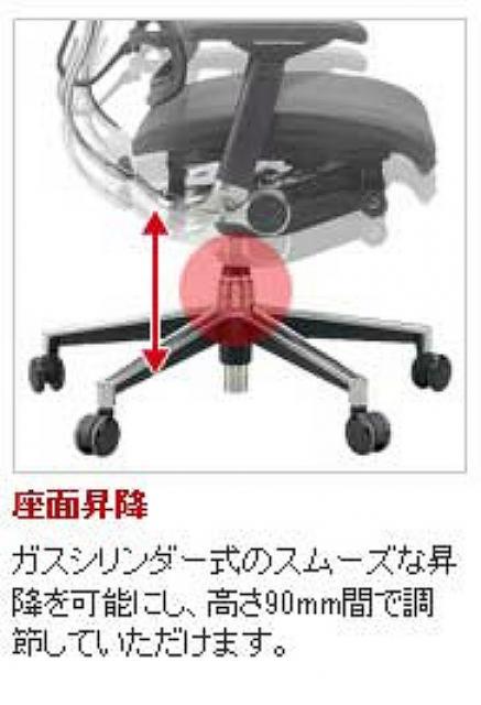 大きなランバーサポート 高機能革張りチェア【事務用品】                         ベーシック チェア                                      新品